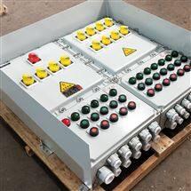 1总12分防爆照明动力配电箱