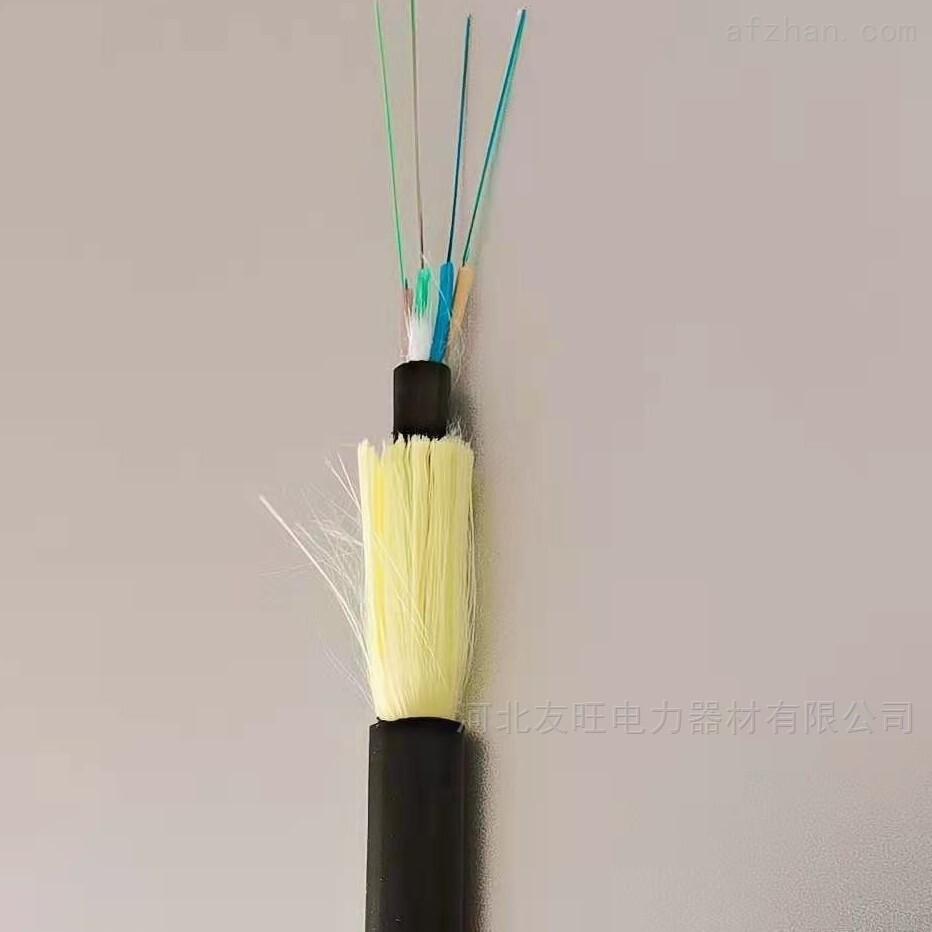 管道光缆GYFTY48芯光缆