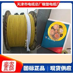 变频橡套电缆MVFP-0.66/1.14KV3*95+3*16