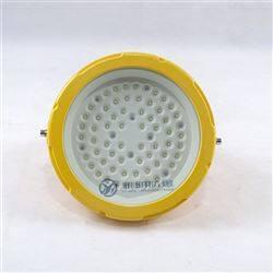 YMD40W50W60W24V36V订做低压防爆LED灯