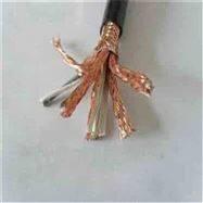 DJYFP电缆,高温电缆
