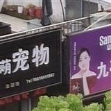 上海宠物店宠物医院监控安装音视频监控