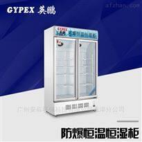 YP-P700EX梅州防爆恒溫恒濕柜 煤氣站專用