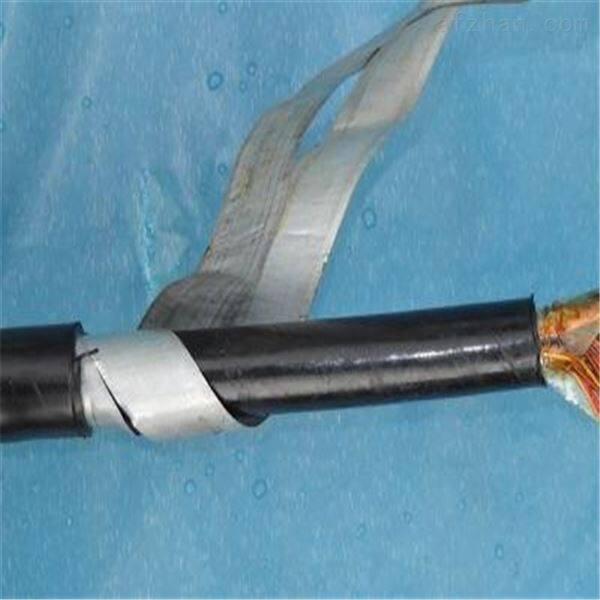 RS485信号线STP-120Ω 镀锡铜丝