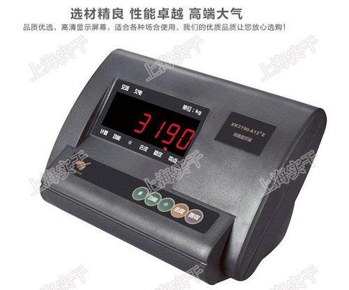 地磅秤仪表