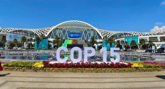 魅视科技护航保障 联合国生物多样性大会COP15