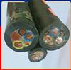 JHS耐高温防水电缆 1*25温泉电缆